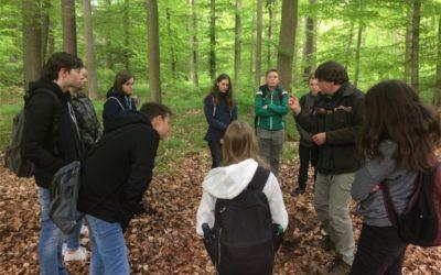 Waldtag der 7. Gymnasialklassen
